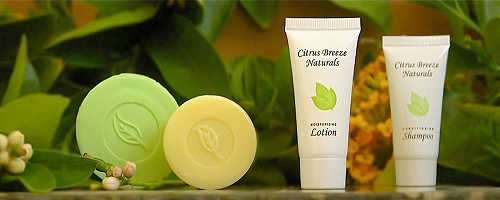 Citrus Breeze Naturals - upscale design and clean packaging bring widespread appeal to this very affordable line.