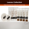 New Product - LEAVES Collection, Hotel Carton Shower Cap,