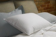 FIRM-PrimaSera™ Down Alternative Sleeping Pillow, 230 TC, White, Standard, by Down Inc.